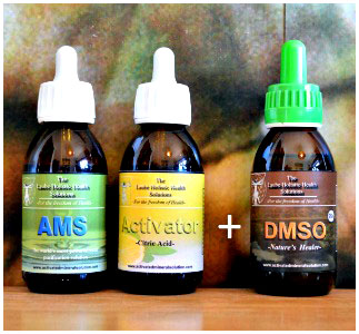 MMS AMS Acido Citrico DMSO KIT